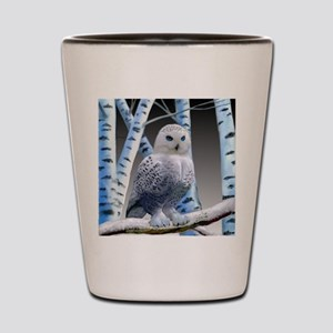 BLUE-EYED SNOW OWL Shot Glass