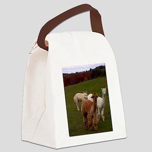 3 Alpacas Canvas Lunch Bag