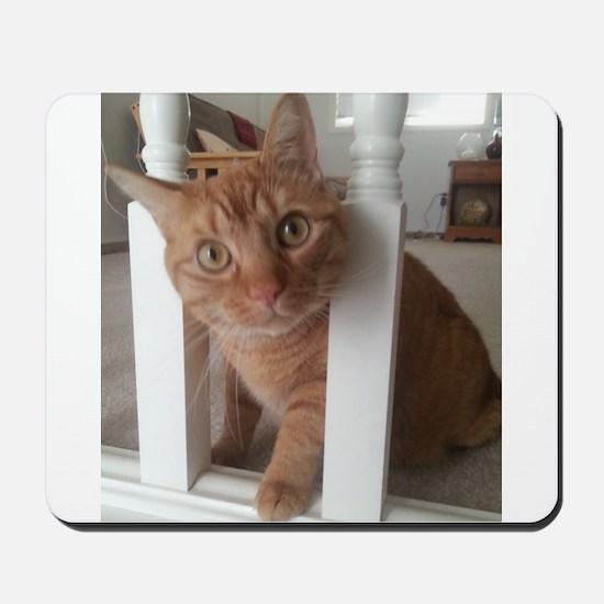 Banister Kitty Mousepad