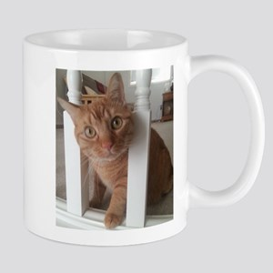 Banister Kitty Mug
