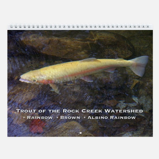 Rainbow, Brown and Albino Rainbow Wall Calendar