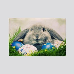 bunny and eggs Rectangle Magnet