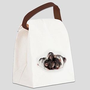 Rat Triplets Canvas Lunch Bag