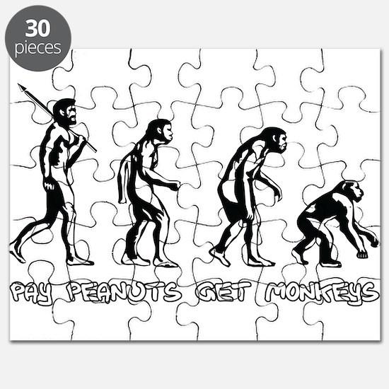 Pay Peanuts Get Monkeys Evolution Puzzle