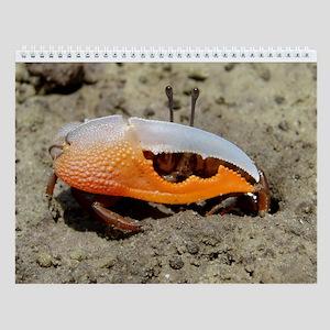 Fiddler Crab Wall Calendar