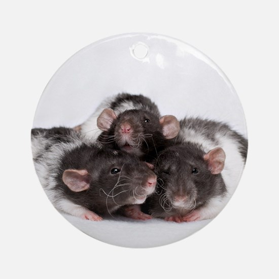 Leonard, Howie and Cooper Ornament (Round)