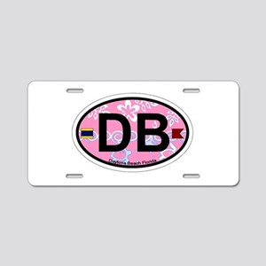 Daytona Beach - Oval Design. Aluminum License Plat