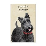 Scottish Terrier Mini Poster Print