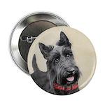 Scottish Terrier 2.25