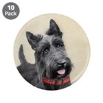 Scottish Terrier 3.5