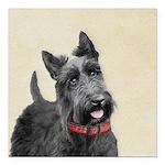 Scottish Terrier Square Car Magnet 3