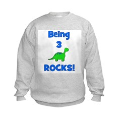 Being 3 Rocks! Dinosaur Sweatshirt