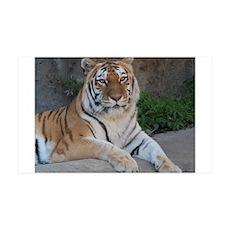 Bengal Tiger Wall Decal