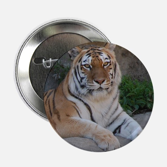 "Bengal Tiger 2.25"" Button"