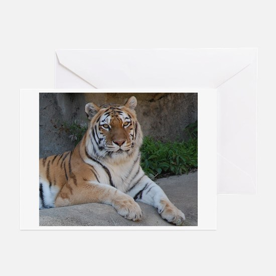 Bengal Tiger Greeting Cards (Pk of 20)