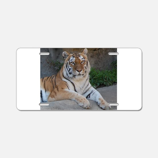 Bengal Tiger Aluminum License Plate