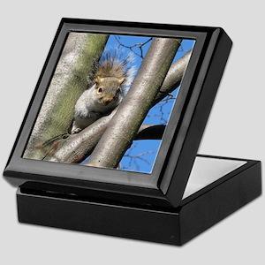 Up a Tree Keepsake Box