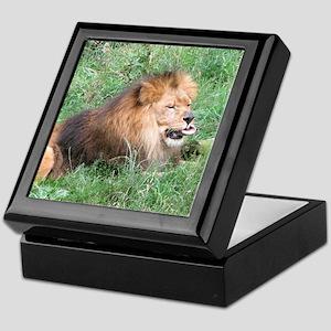 lion 08 Keepsake Box
