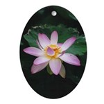 Pink Lotus Blossom Oval Ornament