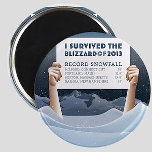 Blizzard of 2013 Survivor Magnet