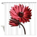 Red lilies Shower Curtains