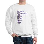 Zebra Autism Acrostic Poem Sweatshirt