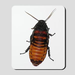 Roaches Mousepad
