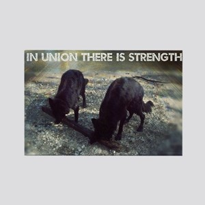 Strength in Union Rectangle Magnet