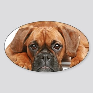 German Boxer dog - Sticker (Oval)