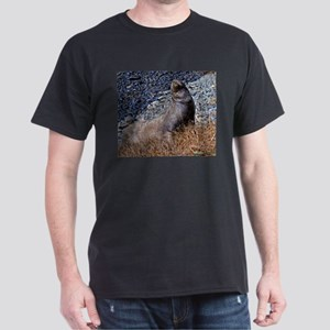 Bull Sealion T-Shirt