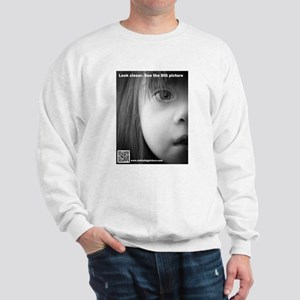 DS the BIG Picture Sweatshirt