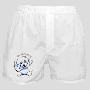 Bichon Frise IAAM Boxer Shorts