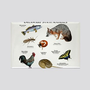 Delaware State Animals Rectangle Magnet