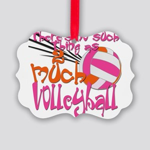 2much volleyball green blue Picture Ornament