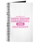Needlepoint University Journal