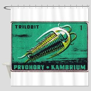 Trilobite Vintage Czechoslovakia Matchbox Label Sh
