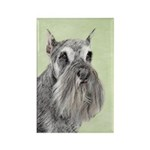 Schnauzer Rectangle Magnet (100 pack)