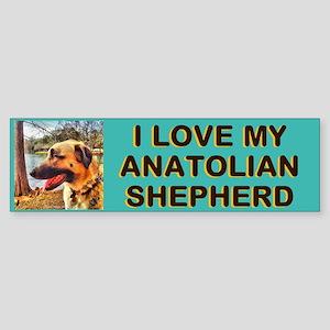 Anatolian Profile by Lake Sticker (Bumper)