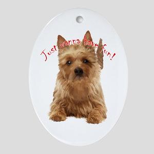 aussie terrier Ornament (Oval)