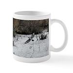 Male Belted Kingfisher Mug