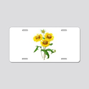 Gaillardia or Sunflowers by Redoute Aluminum Licen