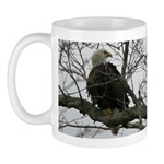 Bald Eagle II Mug