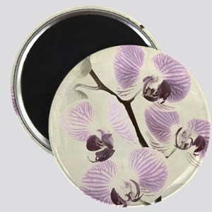 Light Orchids Magnet