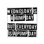 wednesday-is-a-hump-day Square Sticker 3