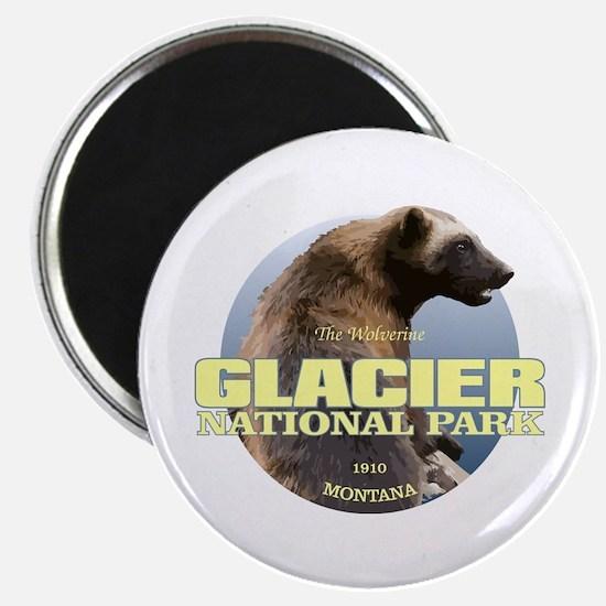 Glacier NP Magnets