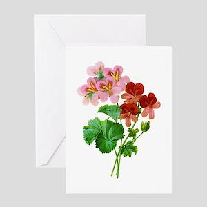 Geranium Variete by Pierre Joseph Redoute Greeting