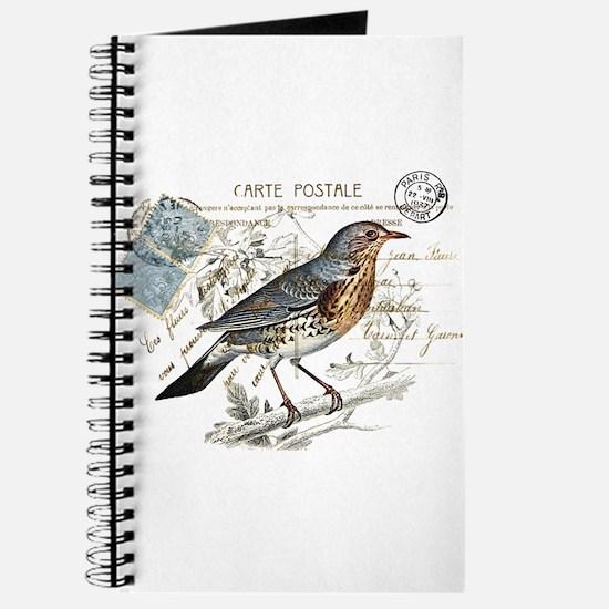 Blue Bird Carte Postale Journal