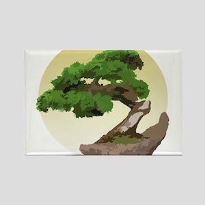 Bonsai Zen tree Rectangle Magnet