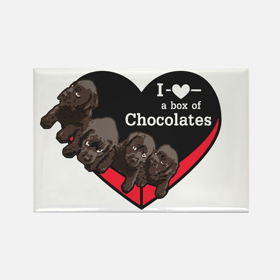 Box of Chocolates Rectangle Magnet