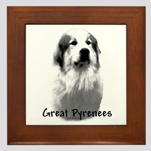 Great Pyr Charcoal Framed Tile